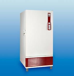 Upright Freezer -40 °C 300Lt 6443